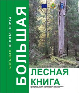 big-forest-book